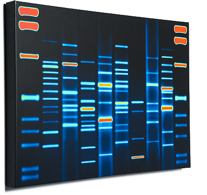 Dna portrait the world s most unique and personalized for Personalized dna art